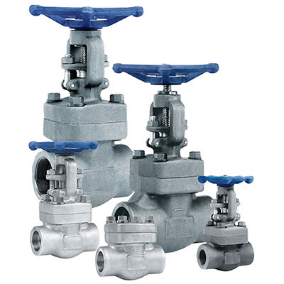 forged steel gate valve manufacturer in india