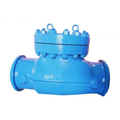 Swing Check Valve Manufacturer in Ahmedabad